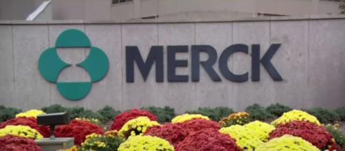 El fármaco de MSD/Merck podría ser una herramienta clave en la erradicación del COVID-19 (T13 YouTube))