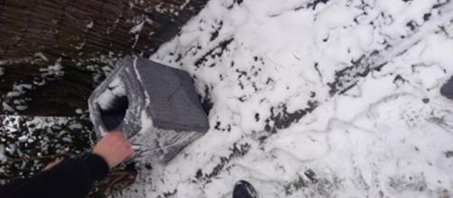 Il trouve un panier dans la neige ce qu'il trouve à l'intérieur est à peine croyable - ©capture d'écran photo Facebook