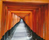 Una selezione dei luoghi da visitare in Giappone.