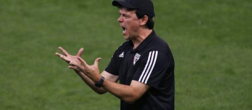 Fernando Diniz recebeu sondagem do Botafogo. (Arquivo Blasting News)