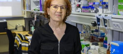 """Margarita del Val apunta la fecha de la cuarta oleada del virus: """"a finales de marzo"""""""