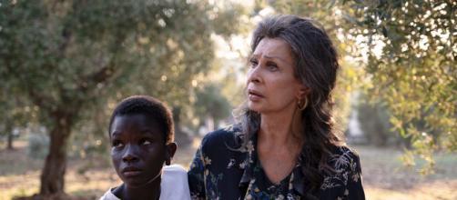 O filme 'Rosa e Momo' foi indicado ao Globo de Ouro. (Arquivo Blasting News)