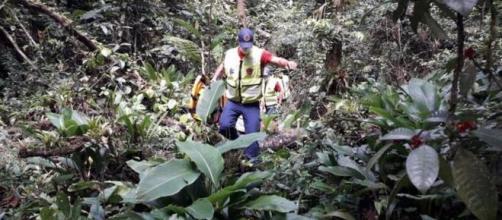 Camila Ribeiro estava desaparecida desde o último dia 2 (Divulgação/Bombeiros Militares de SC)