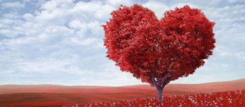 Oroscopo e classifica sull'amore di aprile: flirt per i Gemelli, Ariete intraprendente.
