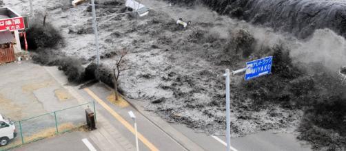 Foto do tsunami que devastou a cidade de Fukushima e causou tragédia nuclear nos arredores (Arquivo Blasting News)
