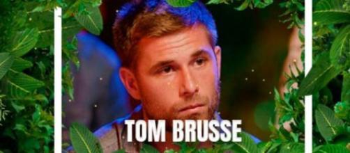 Tom Brusse nuevo concursante (Twitter @telecincoes)