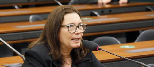 Bia Kicis, presidente da CCJ, tenta conter briga entre deputados na Comissão de Constituição e Justiça (Najara Araujo/Câmara dos Deputados)