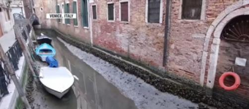 Exceptional low tide leaves canals almost empty in Venice (Image source: WION/YouTube)