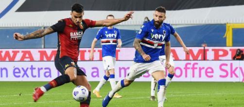 Scamacca in azione contro la Sampdoria.
