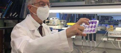 Il vaccino spagnolo in fase di realizzazione sarà somministrato per via intranasale con una sola dose.