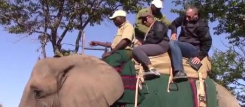 African Safari elephant ride (Image source: Kareem Pinkston/YouTube)