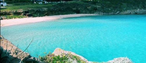 Le spiagge di Santa Teresa faranno da location al remake della Sirenetta.