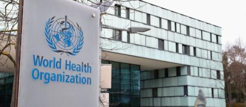 La WHO (OMS) comunica i dati della scomparsa dell'influenza a livello mondiale
