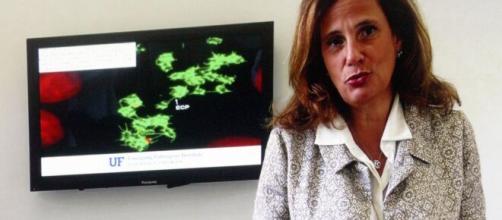 Coronavirus, Ilaria Capua: 'Virus non andrà via neanche con il vaccino'.