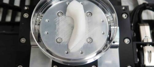 Bio-impression : l'impression 3D dans le secteur médical - 3dprod.com