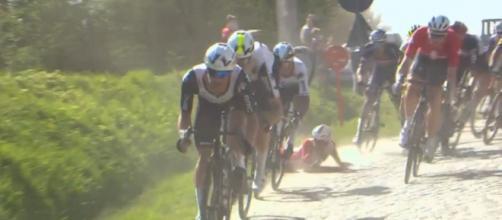 La caduta di Elia Viviani alla Dwars door Vlaanderen.