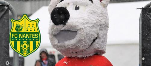Erminig, la mascotte du Stade Rennais (Source : Capture d'écran)