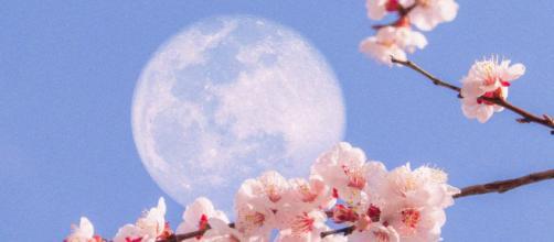 L'oroscopo del giorno 24 aprile: Luna in Bilancia ottima per Sagittario (2ª parte).
