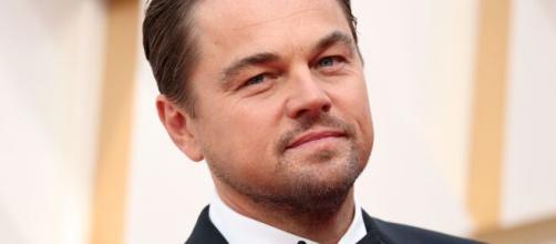Stay Wild è una nuova serie ambientalista che sarà prodotta da DiCaprio per YouTube.