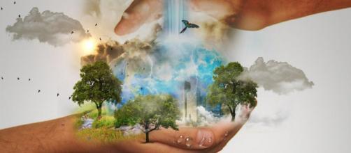 Dia da Terra é comemorado por famosos (Reprodução/Pixabay)