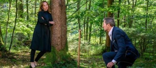 Tempesta d'amore, trame tedesche: Ariane attira il padre di Tim su una mina antiuomo.
