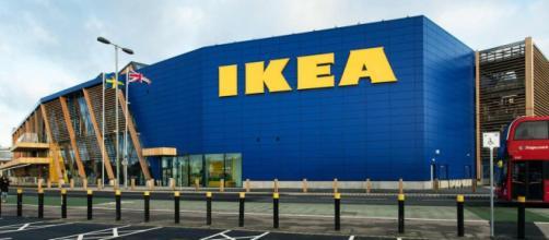 Assunzioni in Ikea, selezioni per varie figure senza diploma.