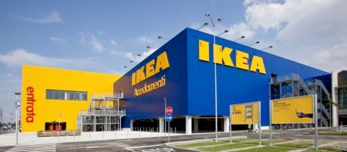 Ikea lancia le assunzioni per persone anche senza diploma.