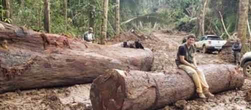 Ricardo Salles posando em tora de madeira ilegal apreendida no Pará (Divulgação/Ministério do Meio Ambiente)