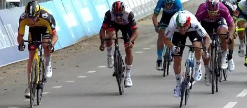 Lo sprint di Giacomo Nizzolo a Verona.