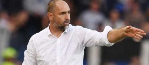 Igor Tudor potrebbe diventare tecnico del Verona.