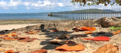 Praia de Bom Jesus dos Pobres, Saubara (BA). (Arquivo Blasting News)