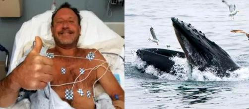 El pescador de langostas fue hospitalizado sin heridas luego de permanecer en el interior de una ballena (Foto Familia Packard)