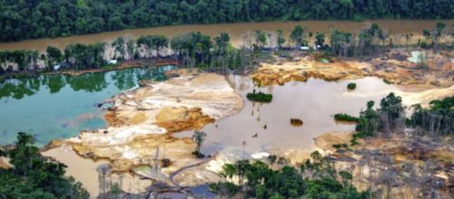 Garimpo ilegal em terra indígena yanomami (Christian Braga/Greenpeace)