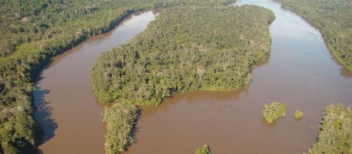 ICMbio é responsável por programas de pesquisa, proteção, preservação da Biodiversidade (Divulgação/ICMBio)