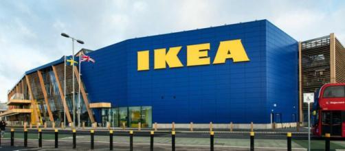 Ikea avvia le assunzioni per vari profili.