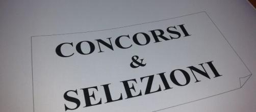 Università del Molise, concorso per 12 assunzioni a tempo indeterminato in categoria D.