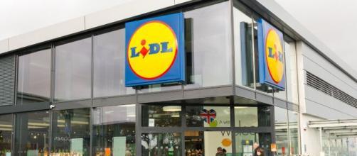 Offerte di lavoro da parte di Lidl.