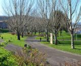 El parque de Bizkotzalde de la localidad de Basauri, donde hombres homófobos atacaron a un joven. (Wikimedia Commons)