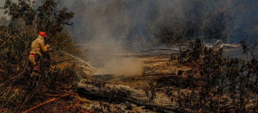 Governo Bolsonaro tira do Inpe divulgação sobre queimadas no país (Mayke Toscano/Secom-MT)
