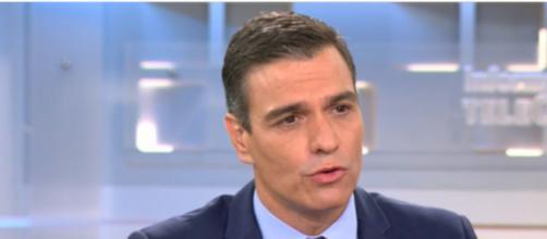 Pedro Sánchez ha referido que deben apoyar más al sector del campo (Twitter, informativotele5)