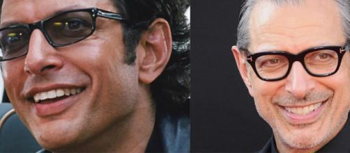 Curiosità su Jeff Goldblum: ha interpretato Ian Malcom in Jurassic Park.