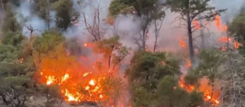 Nine new wildfires erupt across western U.S. (Image source: CBS Evening News/YouTube)