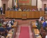 """Marta Bosquet ha pedido """"tranquilidad"""" a sus señorías durante el incidente con la rata en el Parlamento (Twitter, ParlamentoAnd)"""