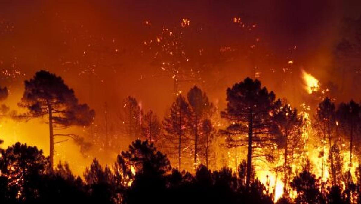 Sardegna, gli incendi bruciano l'oristanese: tanti danni, 400 evacuati a  Cuglieri (Video)