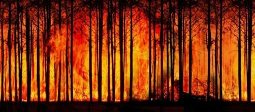At least 67 homes burned down due to large-scale fires in the U.S./Photo via Geralt, Pixabay