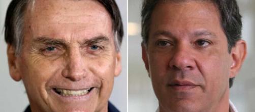 Bolsonaro perde até mesmo para uma possível candidatura de Fernando Haddad, diz pesquisa (Fotomontagem)