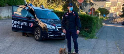 El accidente de las dos jóvenes ha ocurrido en Italia (Twitter, @_Carabinieri)