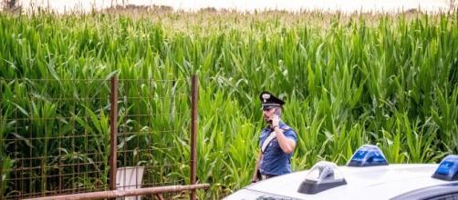 Francesco Pantaleo, il mistero dello studente trovato morto carbonizzato nelle campagne pisane sarà risolto solo dall'autopsia.