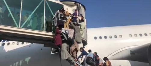 Afegãos morrem ao tentar fugir do país (Reprodução/Redes sociais)
