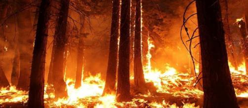 El fuego sigue extendido por la isla de La Palma (Creative Commons)